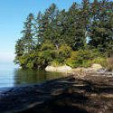 Bush County Park Is Looking For Volunteer Park Host ($100 weekly stipend) In Washington $$