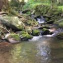 Beautiful Creek Side RV Site For Rent With Full Hook Ups in Gatlinburg, Tennessee