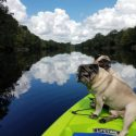 Suwannee River, Florida RV Lot For Rent